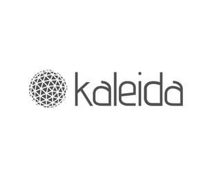 Logo Concepts-Kaleida-01.jpg